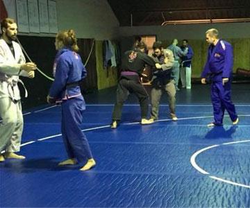 Jujitsu and Judo